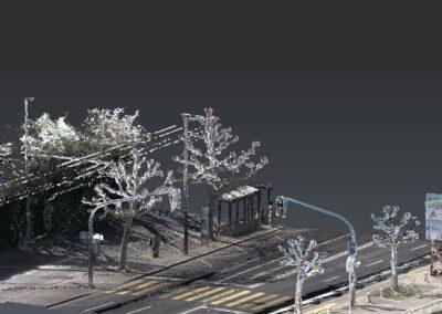 Quai de Cologny (GE) – Emprise des arbres